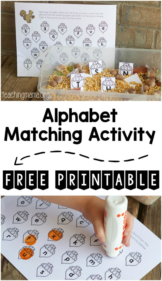 Squirrel Alphabet Matching Activity - a great way to practice matching uppercase letters to lowercase letters.