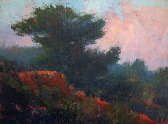 """Morning Mist, Torrey Pines Extension by Catherine Grawin Oil ~ 9"""" x 12"""""""
