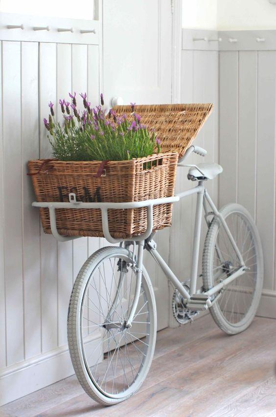 Lavender in Bike Basket