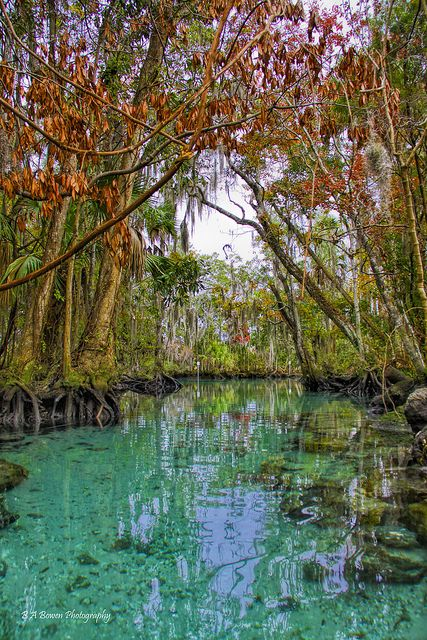 The 10 most beautiful towns in florida three sisters for Most beautiful cities in florida