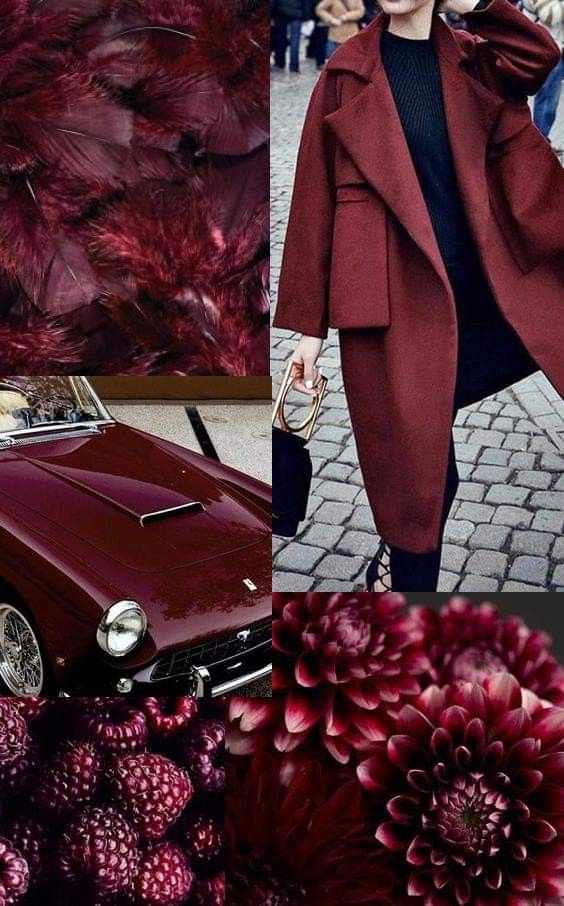 Explore The Tawny Port Color In All It Forms And Shades From Burgundy To Bordeaux And Many More On Inspl Oxblood Color Palette Bordeaux Color Colorful Fashion