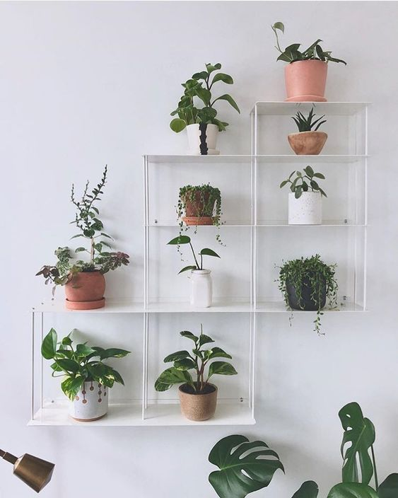 32 Inspiring Wall Plant Decorations For Your Living Room Molitsy Blog Diy Plants Decor Plant Decor Indoor Indoor Plant Wall