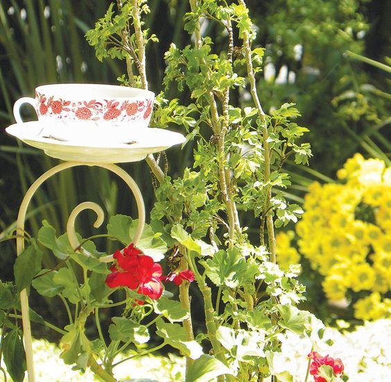 ideias originais jardim : ideias originais jardim:explore originais para ideias originais e muito mais pássaros jarras
