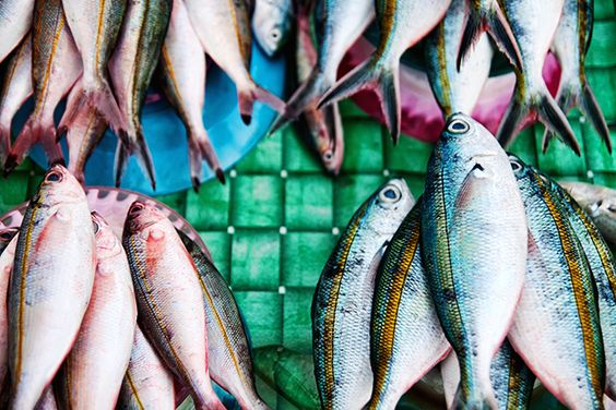 Great Job Avoiding Mercury in Seafood, but Americans Aren't Eating Enough Fish  http://www.takepart.com/article/2013/11/25/women-are-getting-smarter-about-avoiding-mercury-seafood-are-we-still-not-eating?cmpid=tpfood-eml-2013-11-30-super