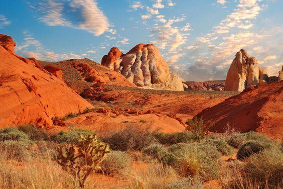 el desierto: