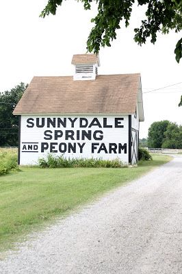 Sunnydale Spring and Peony Farm: