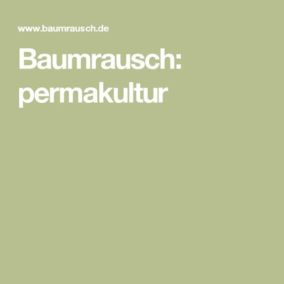 Baumrausch: permakultur
