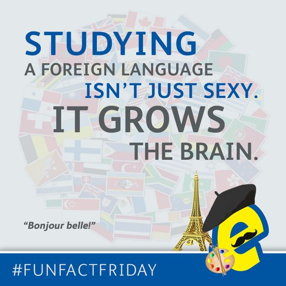 Bonjour Belle! #FunFactFriday #Friday #College #Class #Study #ForeignLanguage #French #Sexy