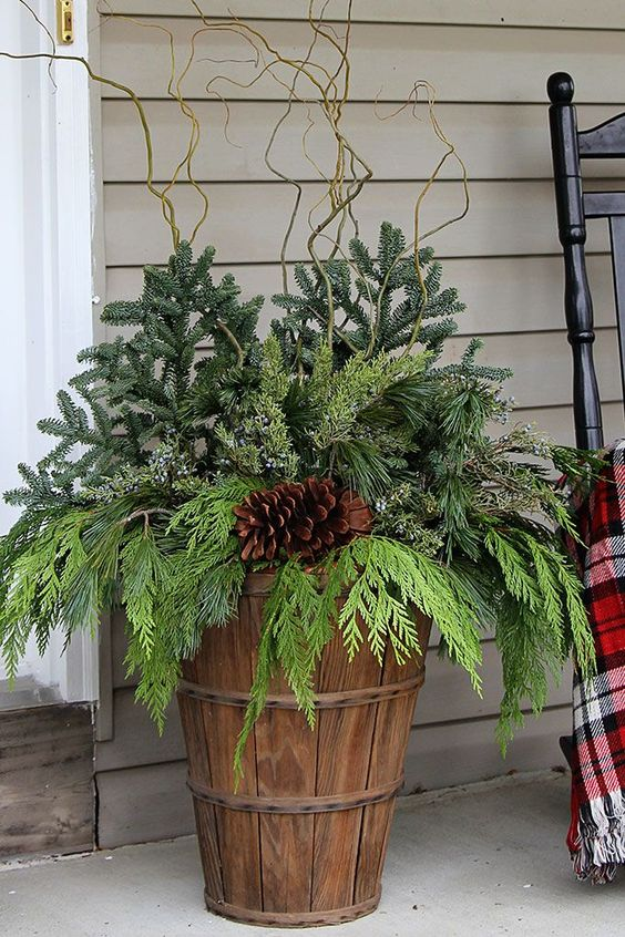 garden container decorated with curly willow branches #christmas  #containers #planters #gardenplanters #twigs  #pinecones #pine