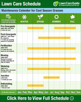Lawn Care Schedule Calendar & Tips - Learn When to Fertilize Lawn Grass