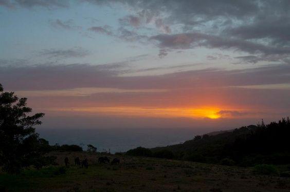 Another beautiful sunset at Kwelanga Lodge  www.kwelanga.co.za