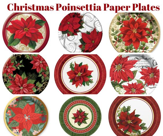 Poinsettia Paper Plates Banner