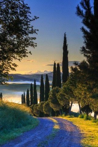 San Quirico d'Orcia, Orcia Valley, Tuscany, Italy Siena: