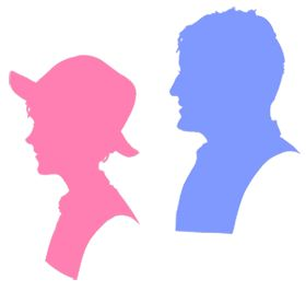 one bright pink and one purple silhouette cameo, from the 'extras' page on our own website