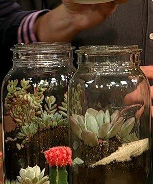 mason jar terrarium a la the chew- so cool!