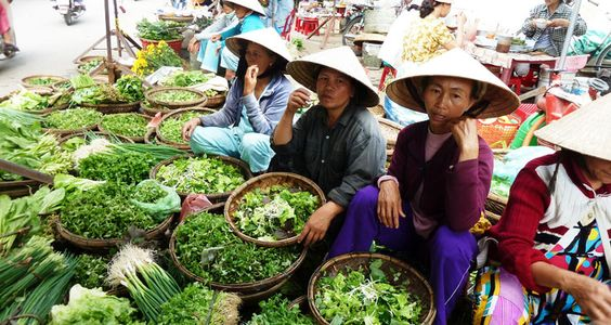 Local speciality food tour in Hoi An. If you're a foodie, cuisine plays an important role in your vacation. Trying all local specialties is a must - do activity.