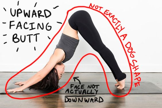 Just a little humor for my yogi buddies...Instead of Downward Facing Dog…   11 Slightly More Accurate Names For Yoga Poses