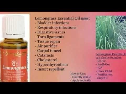 Lemongrass Essential Oil Uses Google Search Lemongrass Essential Oil Uses Essential Oil Uses Essential Oils