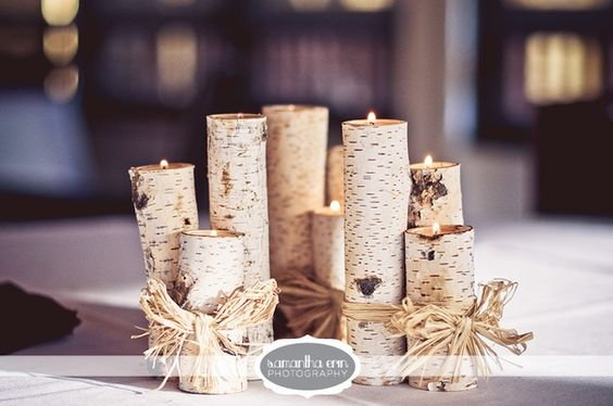Winter wedding centerpiece birch maybe add a small vase
