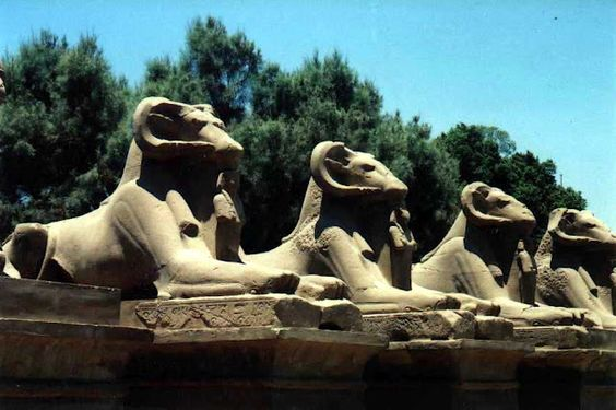 Luxor, Egypt; part of the avenue of ram-headed sphinxes leading to the first pylon of the temple of Karnak.