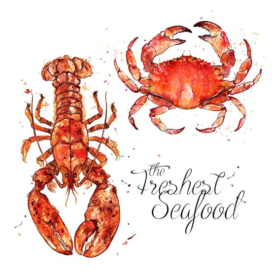 Red lobster and crab shellfish seafood. Watercolor illustration. www.amyholliday.co.uk ...