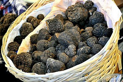 Black Truffle Market In Italy  - Download From Over 29 Million High Quality Stock Photos, Images, Vectors. Sign up for FREE today. Image: 16318879