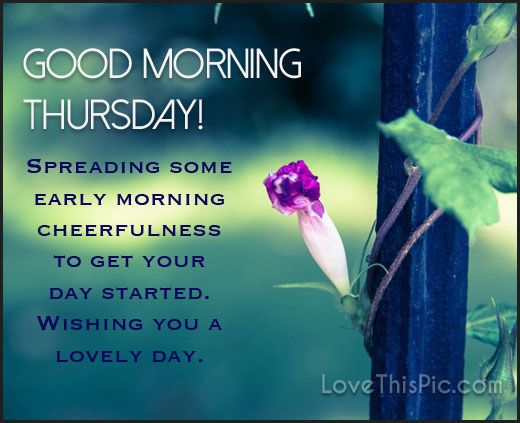 Good Morning Beautiful Thursday Images : Good morning thursday spreading early cheer