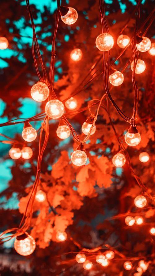 Christmas Wallpaper Backgrounds Christmas Wallpaper Backgrounds Christmas Wallpaper Christmas Lights Wallpaper Christmas lights wallpaper tumblr
