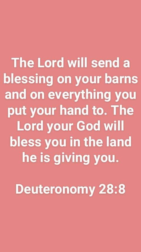 Deuteronomy 28 8 Healed Blessed Redeemed Deuteronomy A Blessing Blessed
