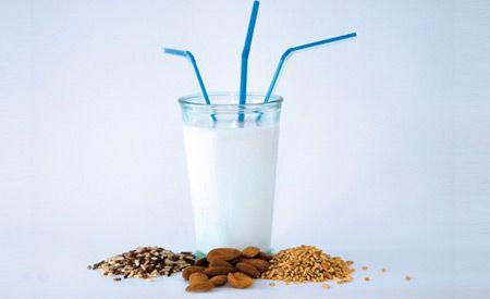 Gesunder Ersatz zur Kuh-Milch. Rezepte für Milch, Yoghurt und Frischkäse aus Nüssen.