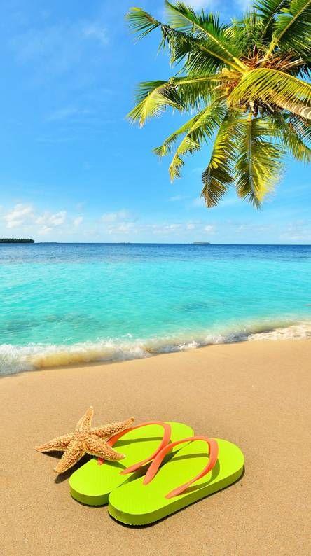 Summer Images Hd : summer, images, Background, Beach, Wallpaper,, Summer
