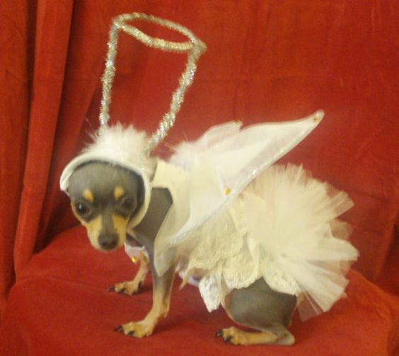 ROMEO!  3 Piece Christmas Angel Baby  Costume Hat by TopThisTopThatCrafts, $35.00