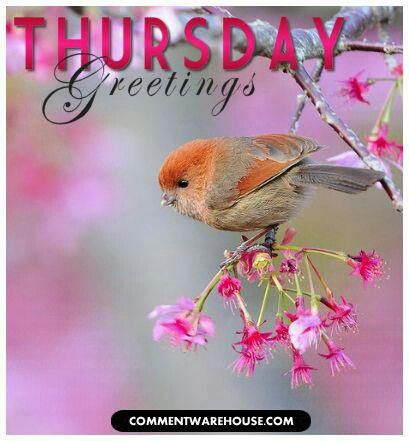 This poster is love, warm, and kindness!  Have a Happy Thursday Everyone...<img src=