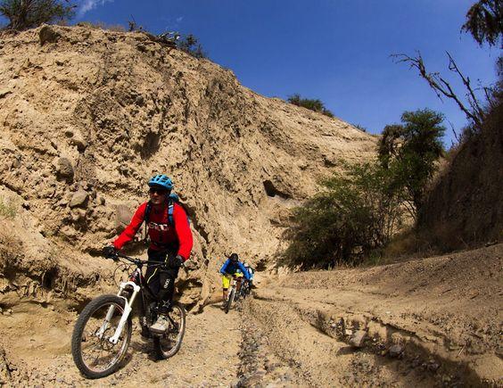 Mountain biking through Andean desert on our mountain biking adventure in Ecuador, South America!  Photo: Stefan Neuhauser  #mountainbiking #ecuador #adventure #andes