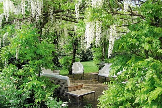 What is it about garden rooms that is so universally appealing? We're getting excited just thinking about the prospect of a seclude little spot somewhere, like this Wisteria covered patio.: