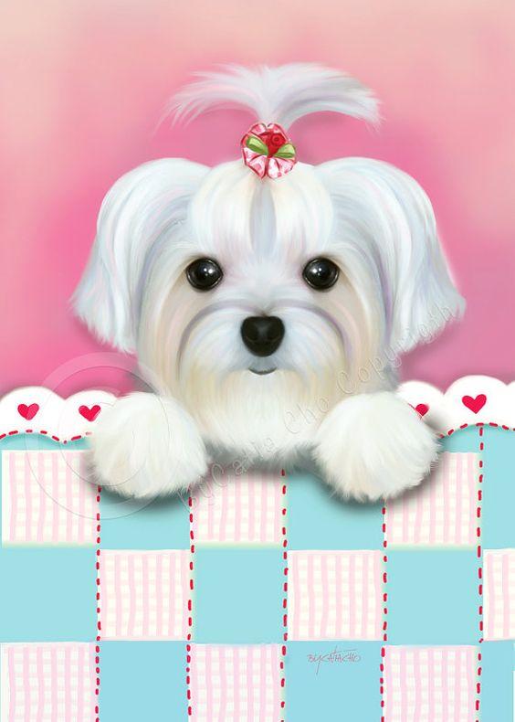 free clipart maltese dog - photo #32