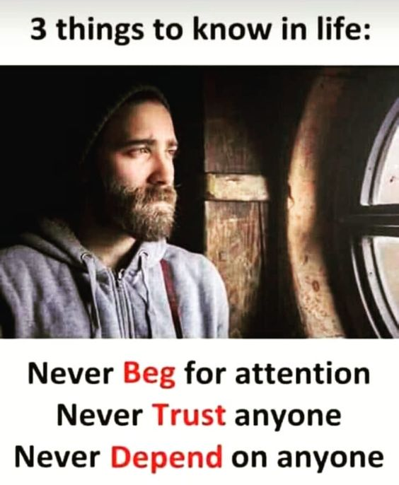 Never Beg Anyone Never Trust Anyone Never Depend Anyone For More Positive And Motivative Quotes F Some Good Quotes Attitude Quotes Emotional Quotes