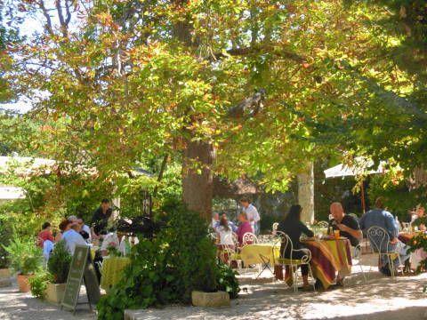 プラタナスの木の下でのプロヴァンスランチ【Chez Thome】|Belleの海外旅行記と恋する美肌