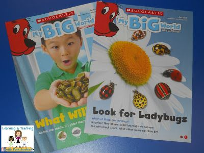 Looking for something to enhance the learning fun?  My Big World with Clifford is a great addition to any curriculum.