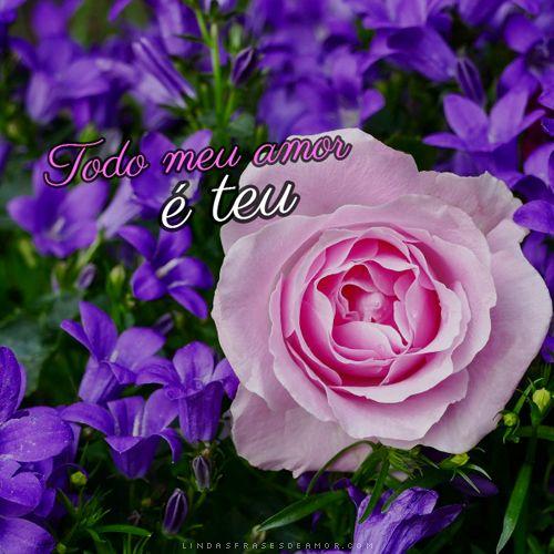 Frases De Amor Com Fotos De Rosas Com Imagens Fotos De Rosas