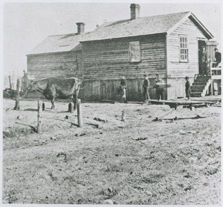 The O'Leary property: Farm Animals, Time Farm, 1870S Chicago, History Chicagohistory, Homestead