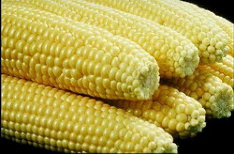 Arroz con maíz cubano