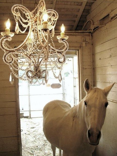 white horse, white walls,pearls and light