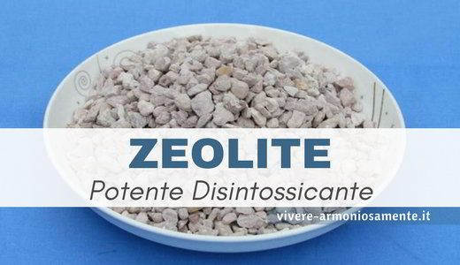 Zeolite Attivata Proprieta E Controindicazioni Zeolite Clinoptilolite Attivata Per Disintossicarsi Dai Metalli Pesanti Acne Rimedi Salute E Benessere Acne