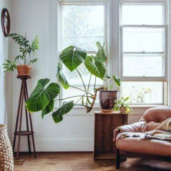 Online Second Hand Furniture Living Room Inspiration Decor