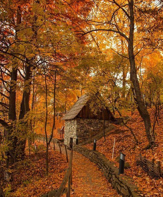 Autumn!