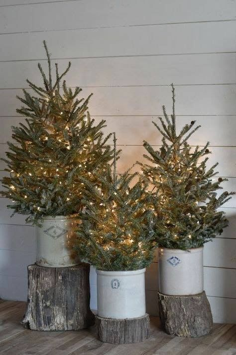 Pickling crocks with trees simple Christmas decorating
