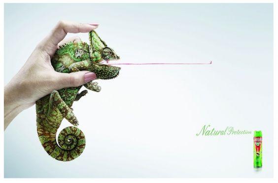 Adeevee - Shieldtox Naturgard: Frog, Chameleon