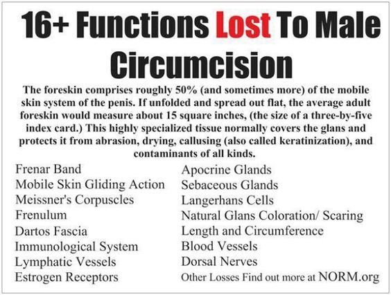 Baby Circumcision Infection