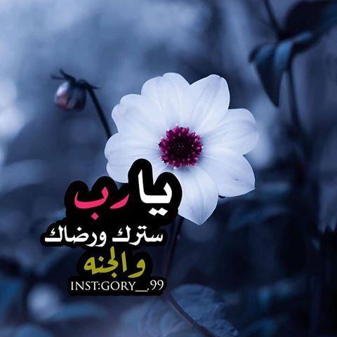 رمزيات من تجميعي K Lovephooto Instagram Photos And Videos Instagram Islam Quran Quran